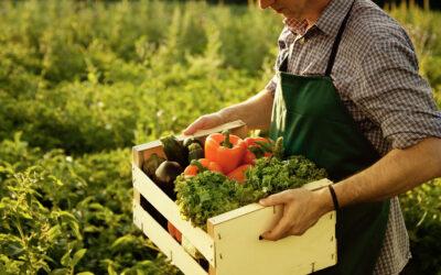 Agricoltura biologica: Bruxelles presenta il piano d'azione UE