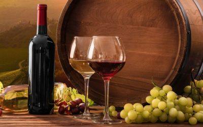Vini italiani, un trend in crescita